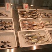 鮮魚・沼島産