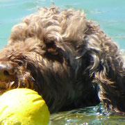 Lule hat sich anders entschieden: Sie überlässt ihr Spielzeug doch nicht der Frau im Boot...