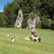 1. Versuch Gruppenfoto: Setze Deinen Hund ins Warten und entferne Dich - es lag nicht an sprachlichen Kommunikations-Barrieren..., einzig....