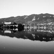 785.032 © Alessandro Tintori