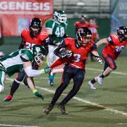 893.678 © 2019 Alessandro Tintori - Rams Milano vs Wolverines Piacenza
