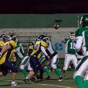 776.178 Rams-Blitz © 2017 Alessandro Tintori