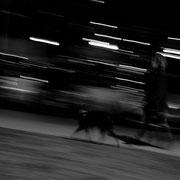 985.111 © 2021 Alessandro Tintori
