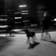 985.120 © 2021 Alessandro Tintori