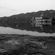 785.008 © Alessandro Tintori