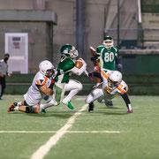 Rams - Predators 999.789 © 2021 Alessandro Tintori