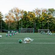Rams - Wolverines 996.0036 © 2021 Alessandro Tintori