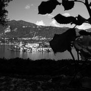 785.071 © Alessandro Tintori
