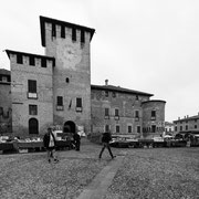778.048 C702 Fontanellato © 2017 Alessandro Tintori