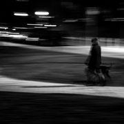 985.036 © 2021 Alessandro Tintori