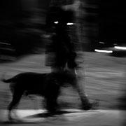 985.033 © 2021 Alessandro Tintori