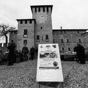 778.059 C702 Fontanellato © 2017 Alessandro Tintori