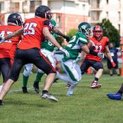 Wolverines - Rams 1000.175 © 2021 Alessandro Tintori