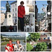 WDS Salzburg 2012