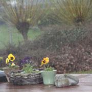 Terrace in the rain