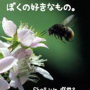 004 川嶋均  イツ文学