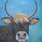 Sayaguesa koe