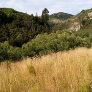 Otago Central Rail Trail  Teil 2