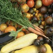 Harvest time!