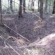 Riesiger Krater im Bergwald