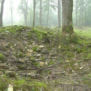 Reste des Schlosses - während der Besetzung nutzten es die Deutschen als Lazarett