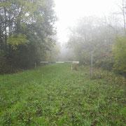 Chemin de la Plume