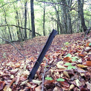 Reste des Drahtverhaus, der das Werk vor angreifender Infanterie schützen sollte
