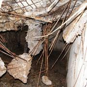 Deutlich zu erkennen die durch den Beschuss teils eingestürzte Decke