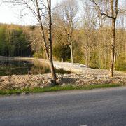Blick auf den gegenüberliegenden Damm des Vauxteichs