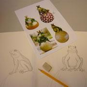 Ein Frosch ist ein Frosch und kein König. Auch dieses Projekt beginnt mit einer Skizze.
