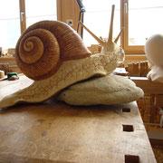 Und schliesslich dient sie als Modell für eine Schnecke, die in Lindenholz geschnitzt wird.