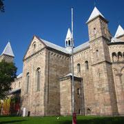 Viborg Domkirche