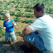 Torben & Dirk Fülling probieren die ersten reifen Erdbeeren der Saison