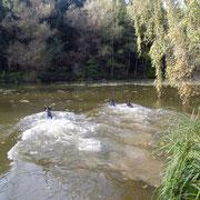 Wasserarbeit in meiner Jagd