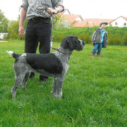 Jola von der Hofmark 2004
