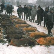 Jagd in Mecklenburg 1999