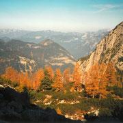 Gamsjagd am Dachstein 2001