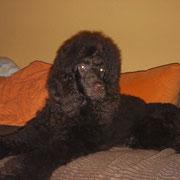 Anouk mit 6 Monaten
