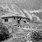 Raíces de piedra. Edo Mérida. Andes venezolanos