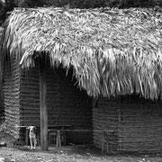 Igual pero distinto. Casa de autoconstrucción hecha al estilo de la vivienda social gubernamental. Güiria, Venezuela