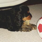 Bald nin ich größer als der Ball