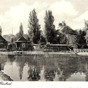 Aschersleben  1936  Freibad