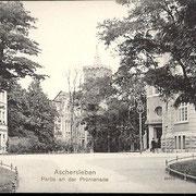 Aschersleben  1912  Partie an der Promenade