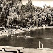 Aschersleben  1959  Freibad