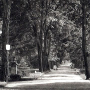 Aschersleben  1936  Stadtpark · Hindenburg Park