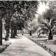 Aschersleben  1937  Herrenbreite