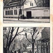 Aschersleben  1910  Gottschalks Restaurant