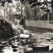 Aschersleben  1950  Eine