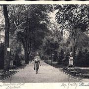 Aschersleben  1938  Hindenburgpark