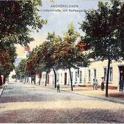 Aschersleben  1910  Lindenstraße mit Kaffeegarten